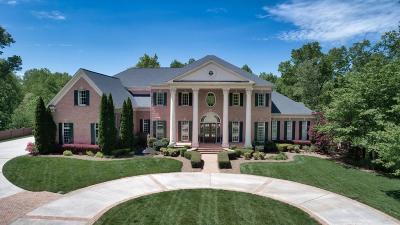 Dawson County Single Family Home For Sale: 367 Summitrail Lane
