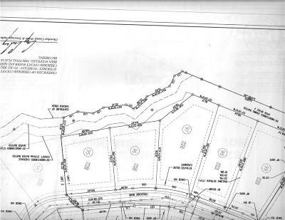 Alpharetta Single Family Home For Sale: 728 Creekside Bend