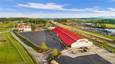 Pickens County Commercial For Sale: 3622 Camp Road