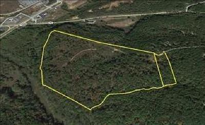 Dahlonega Residential Lots & Land For Sale: Brandy Mountain Road