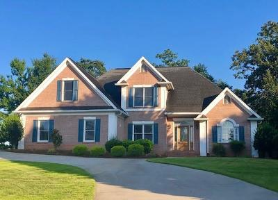 Dawsonville Single Family Home For Sale: 155 Riverview Drive