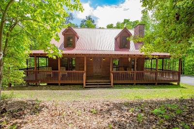 Ellijay Single Family Home For Sale: 33 Holland Circle