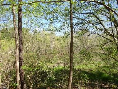 Alpharetta Residential Lots & Land For Sale: 15555 Hopewell Road