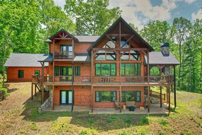 Ellijay Single Family Home For Sale: 254 Settlers Ridge Road