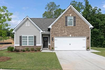 Dawsonville Single Family Home For Sale: 128 Crown Pointe Drive