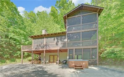 Ellijay Single Family Home For Sale: 241 River Road