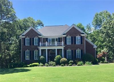 Canton Single Family Home For Sale: 107 Waterford Falls Drive
