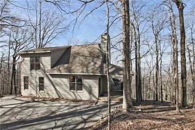 Pickens County Single Family Home For Sale: 114 Little Hendricks Mountain Circle