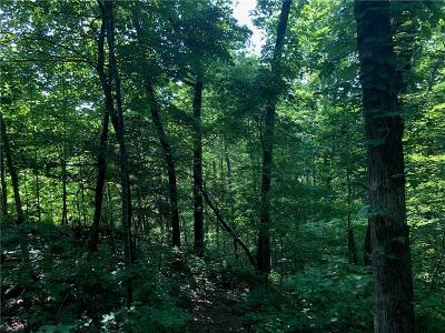 Dawsonville GA Residential Lots & Land For Sale: $215,000