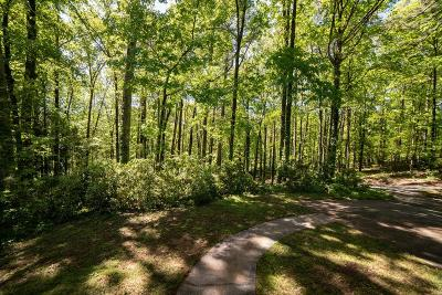 Roswell Residential Lots & Land For Sale: 675 Willeo Road