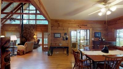 Ellijay Single Family Home For Sale: 74 Sam Allen Mountain Road