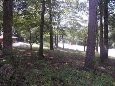 Decatur Residential Lots & Land For Sale: 4435 Flat Shoals Parkway