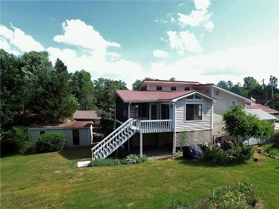 Dawson County Single Family Home For Sale: 91 Overlook Court
