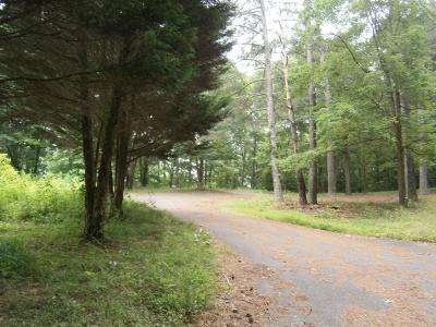 Cartersville Residential Lots & Land For Sale: 41 Franklin Loop SE