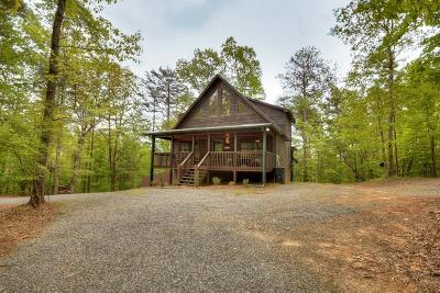 Ellijay Single Family Home For Sale: 64 Alm Lane