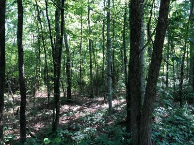 Cartersville Residential Lots & Land For Sale: Shinall Gaines Road