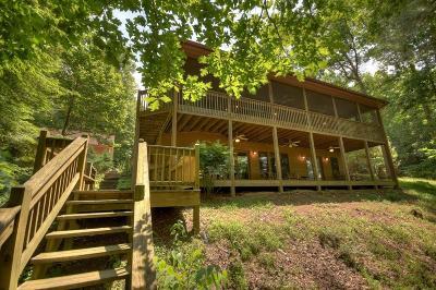 Ellijay Single Family Home For Sale: 38 Alderwood Lane