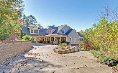 Ellijay Single Family Home For Sale: 221 Laurel Glen Drive