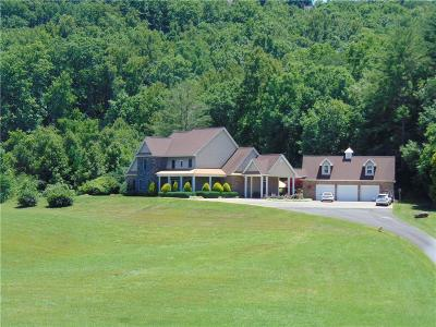 Blairsville Single Family Home For Sale: 718 Hidden Lake Road