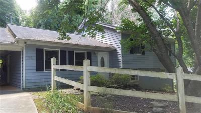 Duluth Single Family Home For Sale: 1752 Mitzi Court