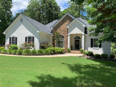 Dawsonville Single Family Home For Sale: 259 Brights Way