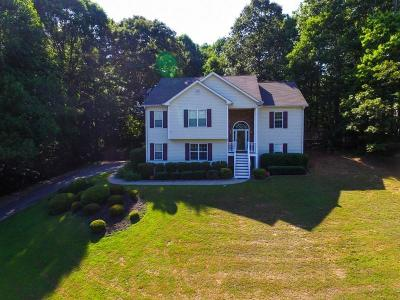 Canton Single Family Home For Sale: 328 Saddlewood Drive