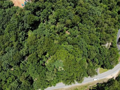 Dawsonville GA Residential Lots & Land For Sale: $250,000