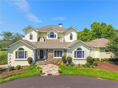 Hall County Single Family Home For Sale: 4080 Ellison Farm Road