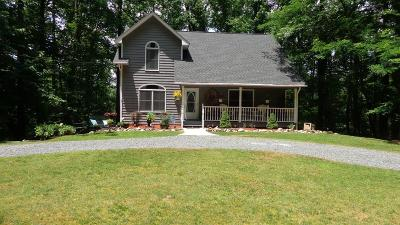 Ellijay Single Family Home For Sale: 90 Mountain View Court