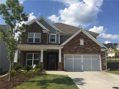 Canton Single Family Home For Sale: 300 Pebblestone Lane