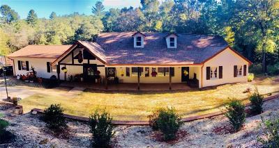 Blue Ridge Single Family Home For Sale: 304 Deer Watch Lane