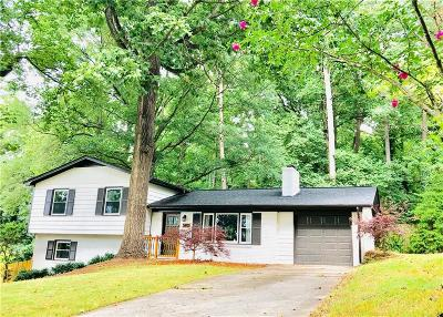 Smyrna Single Family Home For Sale: 3403 Creek Valley Drive SE