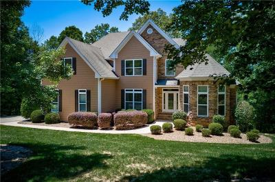 Dahlonega Single Family Home For Sale: 425 Buckeye Lane