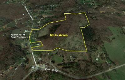 Residential Lots & Land For Sale: 4634 Cool Springs Road