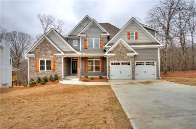 Cartersville Single Family Home For Sale: 27 Shoreline Drive