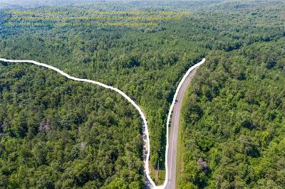 Dawsonville GA Residential Lots & Land For Sale: $998,998