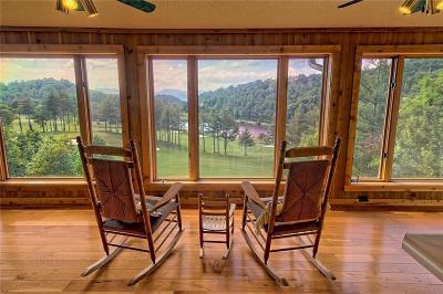 Rabun County Single Family Home For Sale: 294 Ridgepole Drive