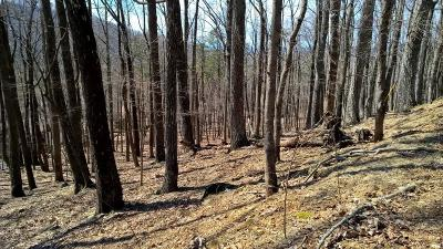 Bent Tree Residential Lots & Land For Sale: 04540 Little Pine Mountain Road