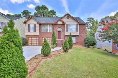 Norcross Single Family Home For Sale: 1460 Turners Ridge Drive