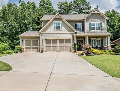 Canton Single Family Home For Sale: 303 Misty Morning Circle