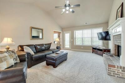Buford Single Family Home For Sale: 4217 Brentwood Drive
