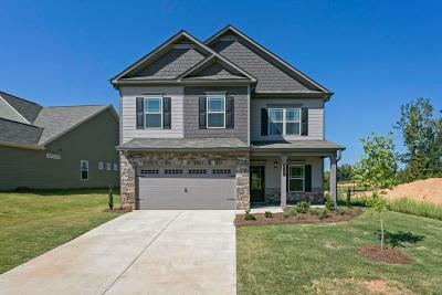 Dawsonville Single Family Home For Sale: 121 Crown Pointe Drive
