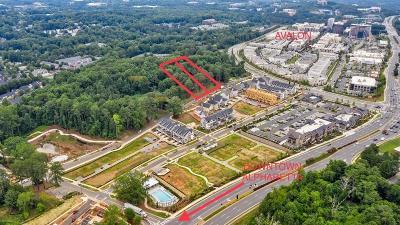 Alpharetta Residential Lots & Land For Sale: 296 Thompson Street