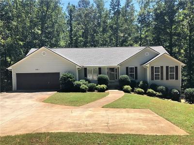 Dallas Single Family Home For Sale: 291 Tibbits Road