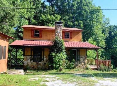 Talking Rock Single Family Home For Sale: 502 Antioch Church Road