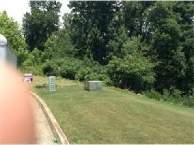 Paulding County Residential Lots & Land For Sale: 303 Kyles Circle
