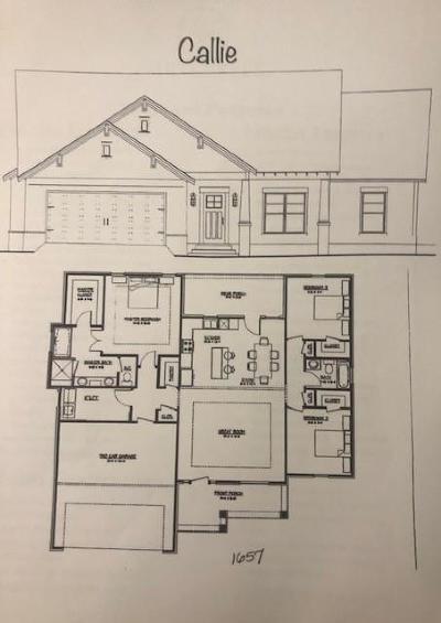 Carroll County, Coweta County, Douglas County, Haralson County, Heard County, Paulding County Single Family Home For Sale: 520 Brown Rd