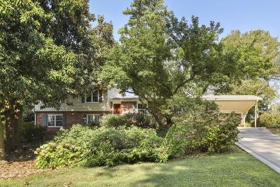 Dekalb County Single Family Home For Sale: 4164 Ashwoody Trail NE