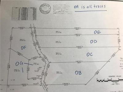 Carroll County Residential Lots & Land For Sale: 0A W McIntosh Circle