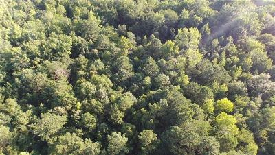 Paulding County Residential Lots & Land For Sale: Highway 101 North